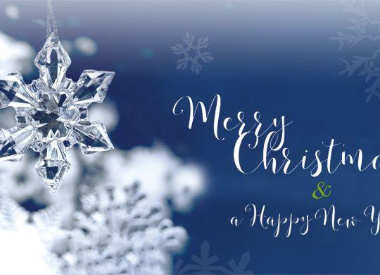 albis-elcon-christmas